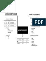 imprimir caja negra (1).docx