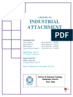 Internship_Report_at_Software_Firm.pdf