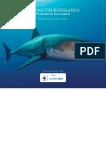 Tiburon-blanco-Mauricio-Hoyos-WWF-AWFTT-web.pdf