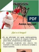 Dengue diapositivas