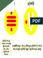 Pitru Symbol