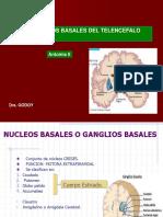 NUCLEOS BASALES DEL TELENCEFALO