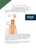 Qué son las Pastillas Anticonceptivas y cómo actúan.docx