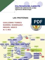 96322195-PROTEINAS-Exposicion-Power-Point.pdf