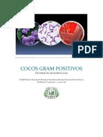 Cocos gram positivos lab