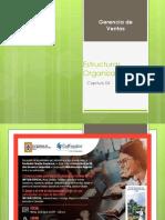 06 Ses -Gerencia de Ventas - Cap 04 Estructuras Organizacionales (1)