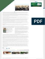El futuro del algodón en Argentina – Ruralnet.pdf