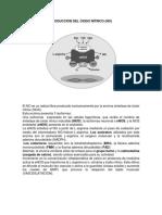PRODUCCIÓN DEL ÓXIDO NÍTRICO DO.docx