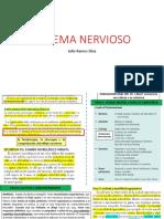 Sistema Nervioso Pediatria