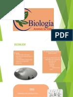 Biologia (1)i