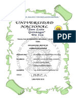 organos-de-motor.docx