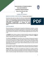 Reporte Lectura 1 Medios de Control Constitucional