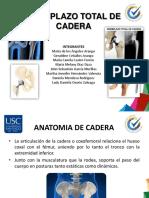 REMPLAZO TOTAL DE CADERA.pdf