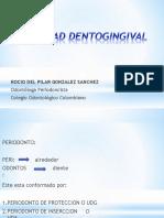 01 Unidaddentogingival1 130513173906 Phpapp01 (1)
