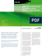 DSM Carbon Footprint Study