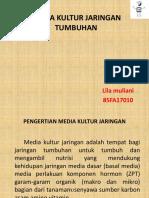 MEDIA KULTUR JARINGAN TUMBUHAN.pptx