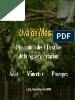 MERCADO DE UVA EN PERU