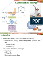 Metabolism Generation of Energy .ppt