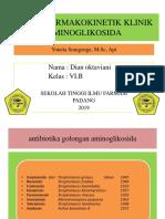 Dian Oktaviani 1601060 Aminoglikosida