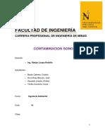 informe ambiental conta sonora.docx