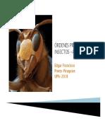 Ordenes Principales Insectos EP 2018