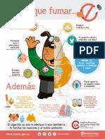 Infografía Riesgos del tabaco