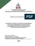 Dissertacao_GeoquimicaOrganicaFormacao.pdf