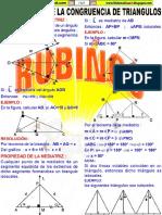 RUBIÑOS ADCT 1.pdf