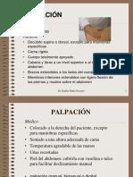 4.  PALPACIÓN