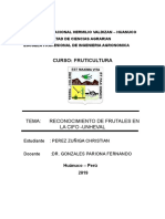 reconocimiento de frutales.docx