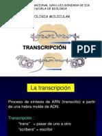 Clase 2 Transcripción RNA