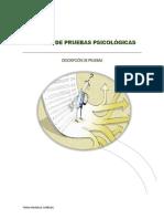 Bateria de Pruebas Psicológicas- Descripción General