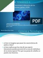 Cromosomas, Genes y ADN