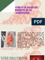 r.a 1.4.1 b Promoción de La Salud Del Producto de La Concepción