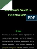 Practica Neuropsicologia General Practica Agnosias