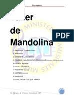 Taller de Mandolina. Mandolina 1.- Partes de La Mandolina 2.- Afinacion 3.-Nombre de Las Cuerdas
