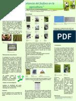 Cartel de Empaques Biodegradables