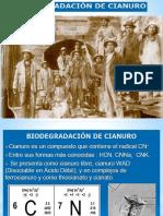2018 BIO clases 9 Cianuro Mercurio.pptx