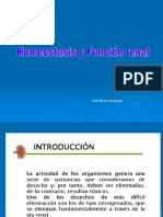 Homeostasisyfuncinrenal 2012 120414135122 Phpapp02