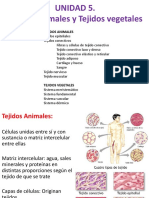 Unidad 5 - Biologia General.pdf