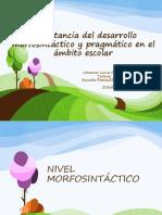 Importancia Del Desarrollo Morfosintáctico y Pragmático Final
