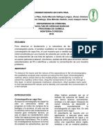 informe analitica 3 lans.docx