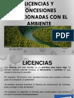4-Jerarquia de Las Leyes Ambientales Tutela Jurídico Ambiental.ppt