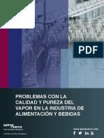SPIRAX-Problemas-con-la-calidad-y-pureza-del-vapor.pdf