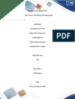 Paso 4 - Descripción de la Información. (2).docx