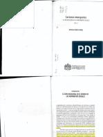 El giro decolonial en los movimientos sociales.pdf