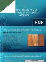 Especies Forestales