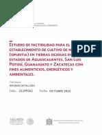 Nopal_Detallado.pdf