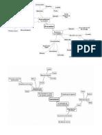 mapa conceptual de la ley de gravedad (1).docx