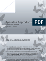 Aparatos Reproductores XLG